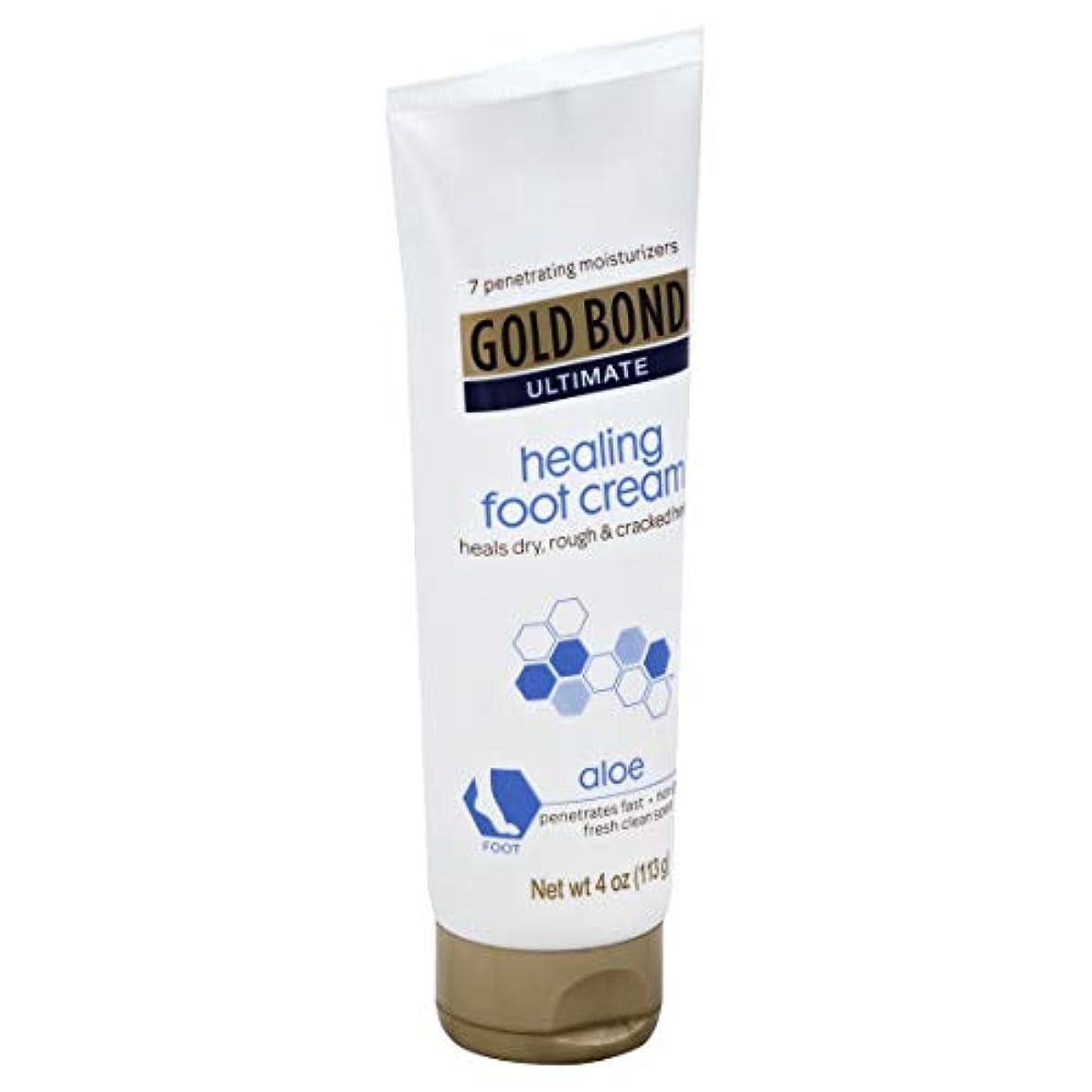 中販売員頼むGold Bond Healing Foot Therapy Cream 120 ml (並行輸入品)