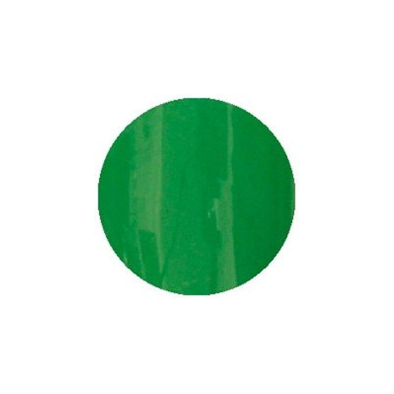 赤字過度のジェーンオースティンロコジェル カラージェル M-29 ビビットグリーン 4g