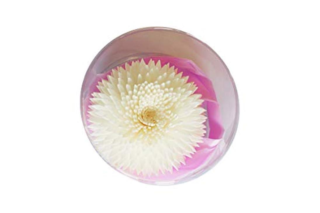 傭兵揃える推進、動かすMAYA フラワーディフューザー ソラフラワー アナスタシア (8cm) [並行輸入品]  Aroma Flower Diffuser Sola Flwoer - Anastasia
