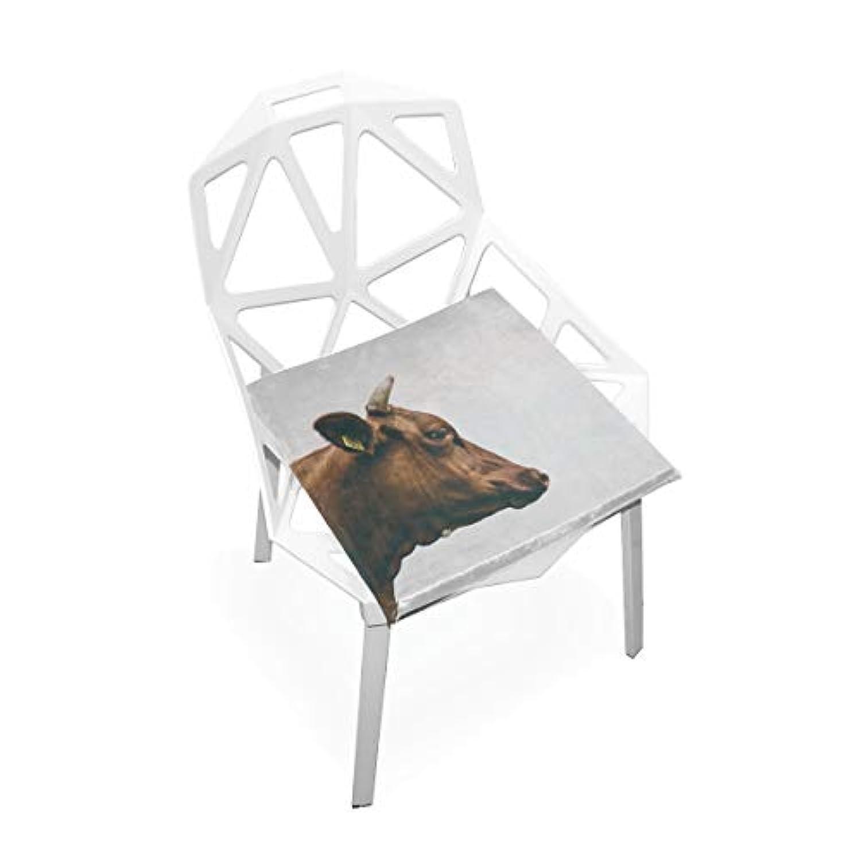 座布団 低反発 牛 写真 ビロード 椅子用 オフィス 車 洗える 40x40 かわいい おしゃれ ファスナー ふわふわ fohoo 学校