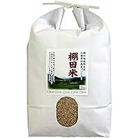 棚田米玄米5キロ
