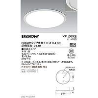 遠藤照明 LEDZ TWIN TUBE series デザインベースライト 下面乳白パネル形 ERK9859W