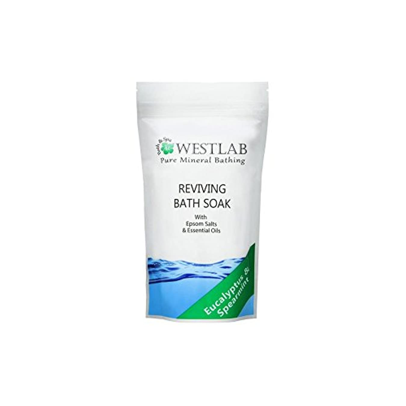 つぼみ砦バース(500グラム)をソークエプソム塩浴を復活させます x4 - Westlab Revive Epsom Salt Bath Soak (500g) (Pack of 4) [並行輸入品]