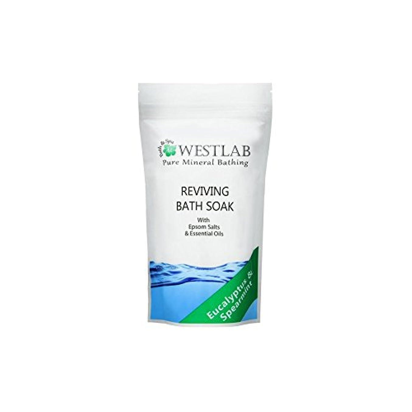 欲求不満誇張するに頼る(500グラム)をソークエプソム塩浴を復活させます x4 - Westlab Revive Epsom Salt Bath Soak (500g) (Pack of 4) [並行輸入品]