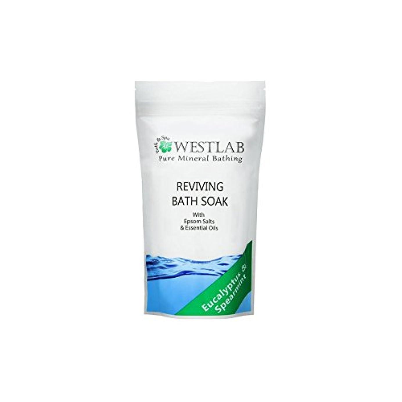 狂乱適度な後ろ、背後、背面(部(500グラム)をソークエプソム塩浴を復活させます x4 - Westlab Revive Epsom Salt Bath Soak (500g) (Pack of 4) [並行輸入品]