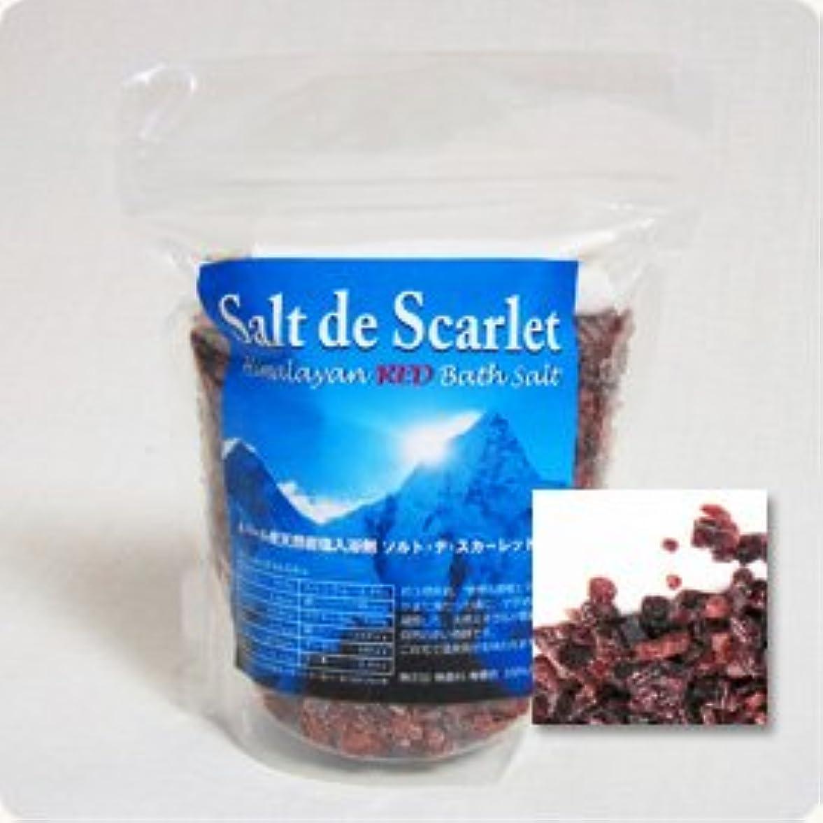 ばかげている目に見える啓発する赤いヒマラヤ岩塩バスソルト 「ソルトデスカーレット」30日分