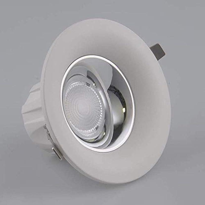 正確溶融ロッドJblyl 世帯ごとのエントランス7W10W15W20W LEDラウンドパネルライト商業凹型LEDダウンライト省エネCOBスポットライト (Color : 白色光, サイズ : 7W)