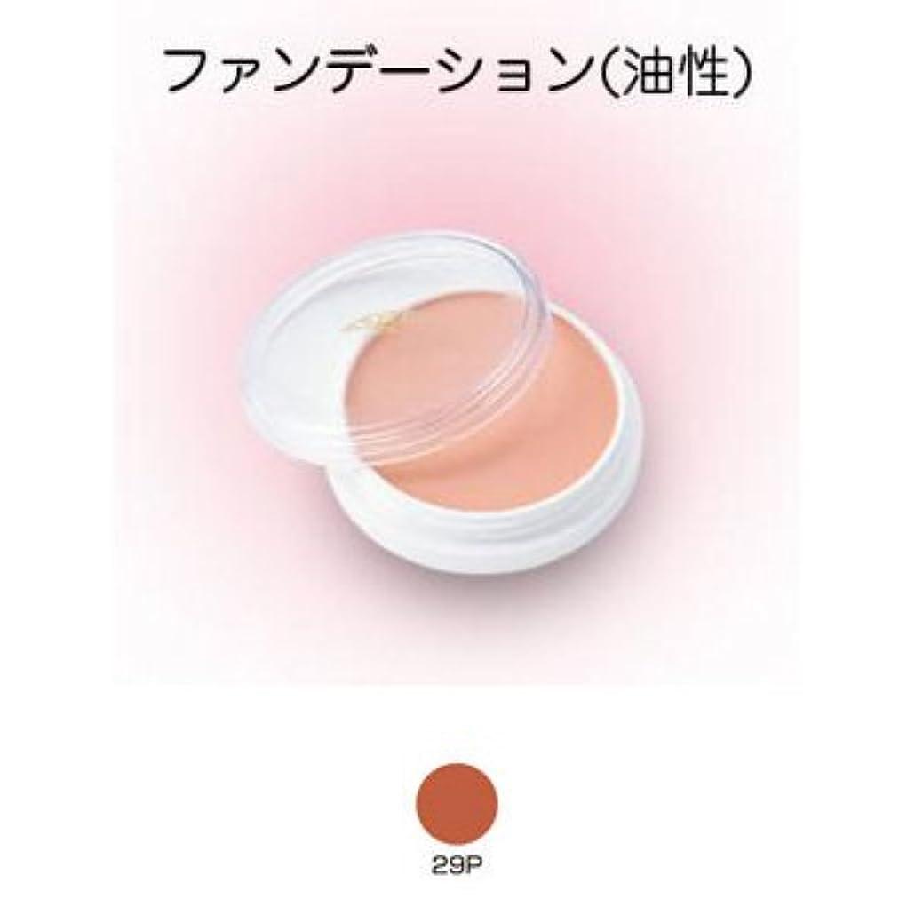 遺伝子電気的ラッシュグリースペイント 8g 29P 【三善】ドーラン