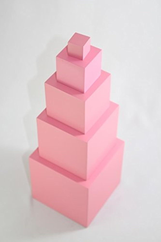 モンテッソーリ ピンクタワー ?5 ステップ? Montessori Pink Tower 知育玩具