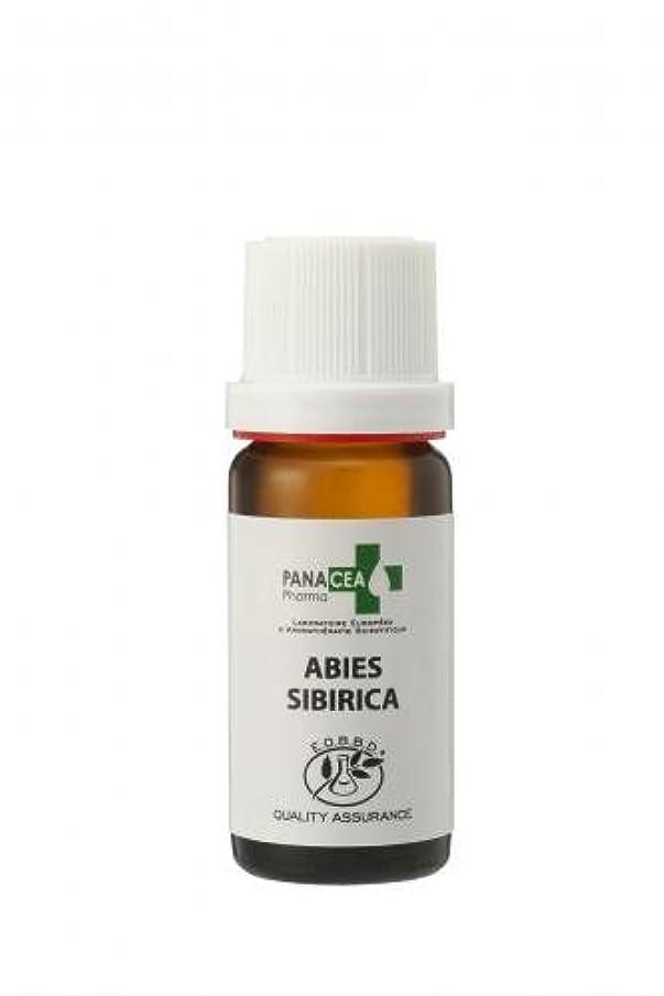 虹スイング壊滅的なシベリアモミ (Abies sibirica) 10ml エッセンシャルオイル PANACEA PHARMA パナセア ファルマ