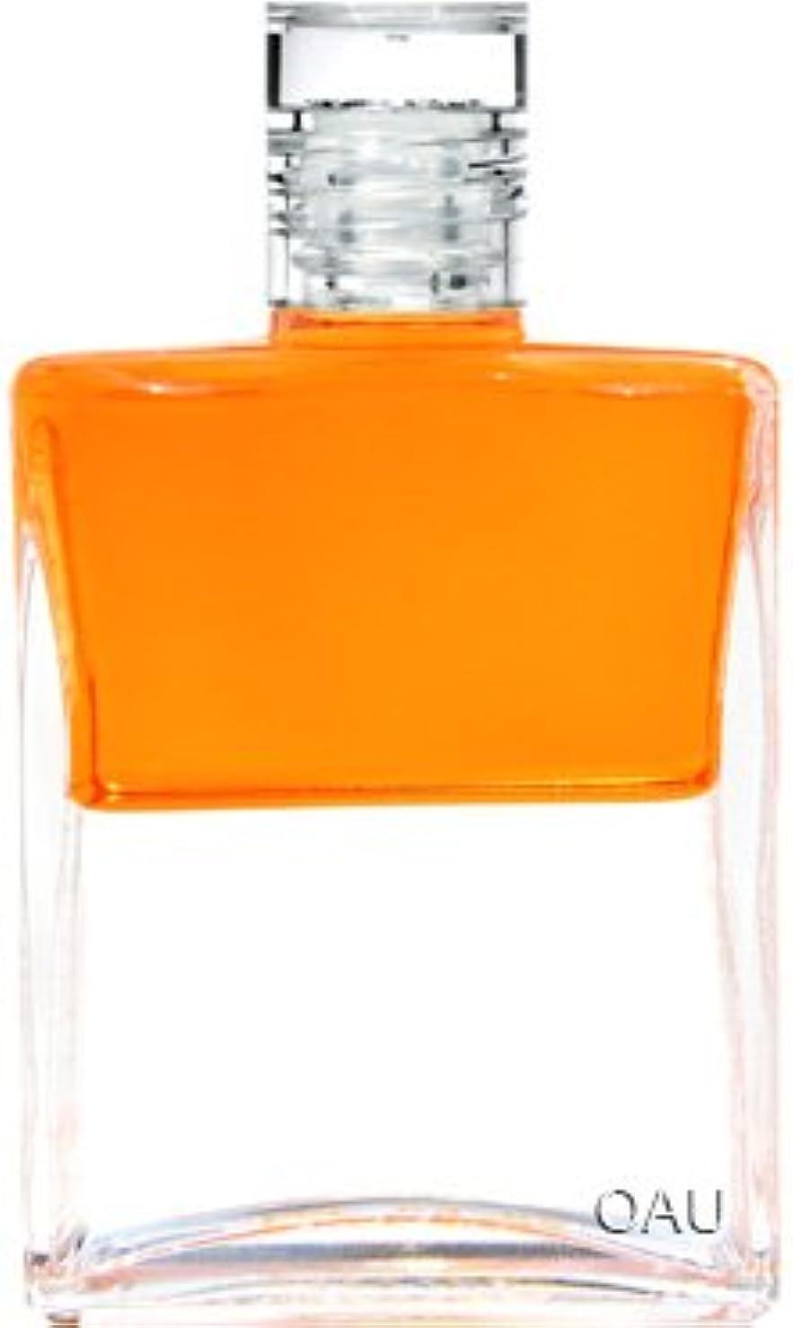 コールドブラジャー無駄にオーラソーマ イクイリブリアム ボトル B073 50ml 荘子「深い洞察を伝える」(使い方リーフレット付)