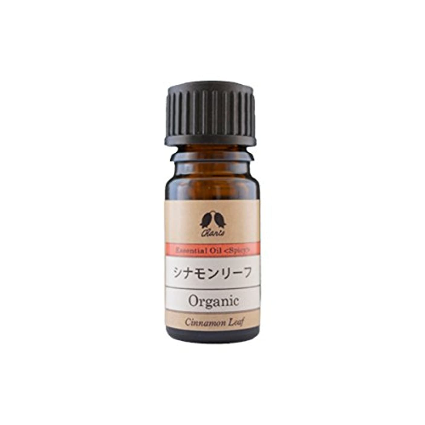 伝染性の課税ストレスカリス エッセンシャルオイル シナモンリーフ オーガニック オイル 5ml