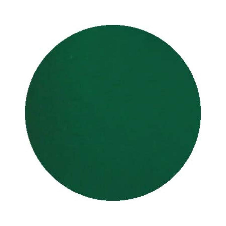 国旗目の前の修復Inity アイニティ ハイエンドカラー GR-01M グリーン 3g