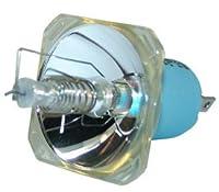 交換用for Philips 928125605355裸ランプのみ交換用電球