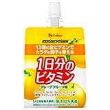 ハウスウェルネス PERFECT VITAMIN(パーフェクトビタミン) 1日分のビタミンゼリー 180gパウチ×24本入×(2ケース)