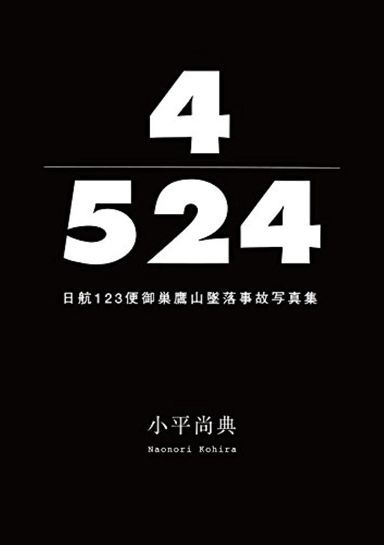 フェード割合再集計4/524 日航123便御巣鷹山墜落事故写真集