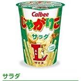 カルビー じゃがりこ サラダ味 LサイズX12個(1箱)