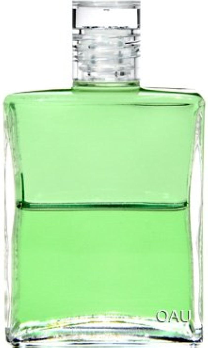 色合い急襲多用途オーラソーマ イクイリブリアム ボトル B053 50ml ヒラリオン 「道、真理、そして生命」(使い方リーフレット付)