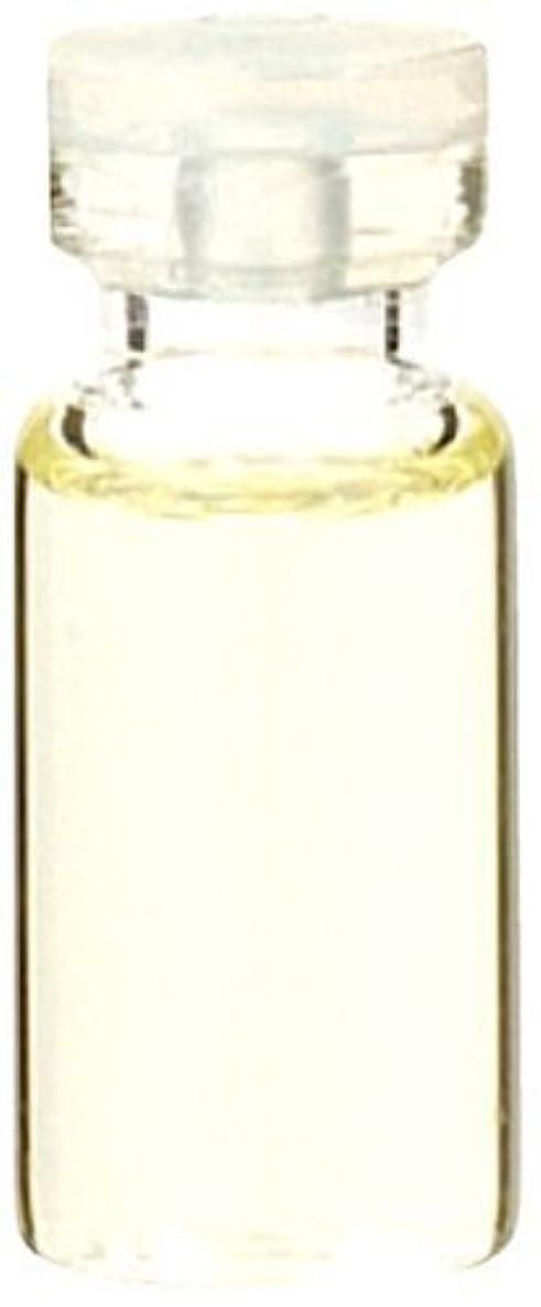 エキサイティング出会い個性生活の木 ラベンダーフランス産 50ml