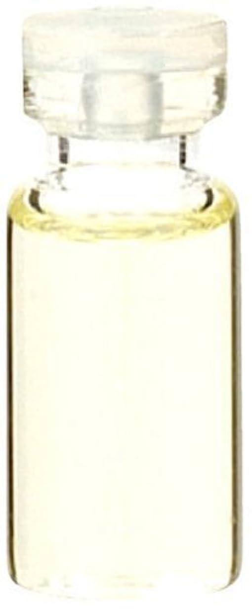 処方呪われたフォージ生活の木 ラベンダーフランス産 50ml