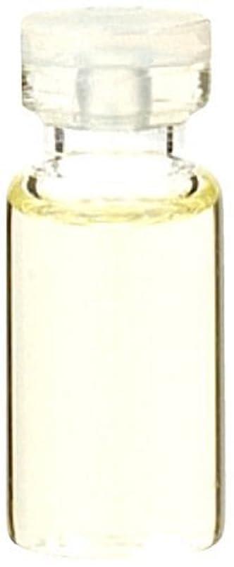 独立したスクワイアネックレット生活の木 ラベンダーフランス産 50ml