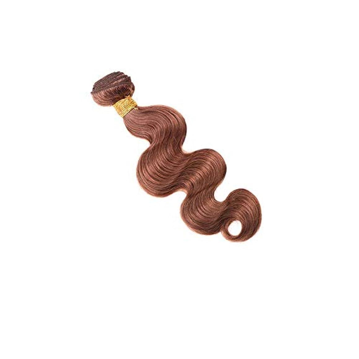 闘争ネックレス繁栄するHOHYLLYA 実体波ヘアエクステンション人間の髪の毛100g / 1束ブラジルの髪織り横糸 - 30#ブラウン色(10