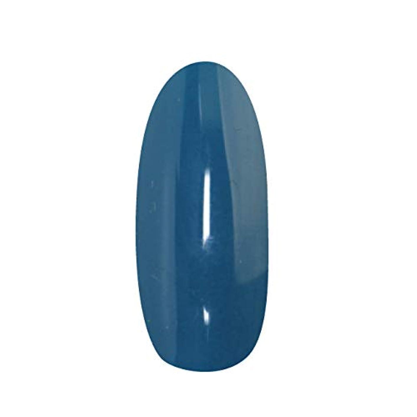 古風なトレーニング急速なT-GEL COLLECTION カラージェル D199 ティールブルー 4ml