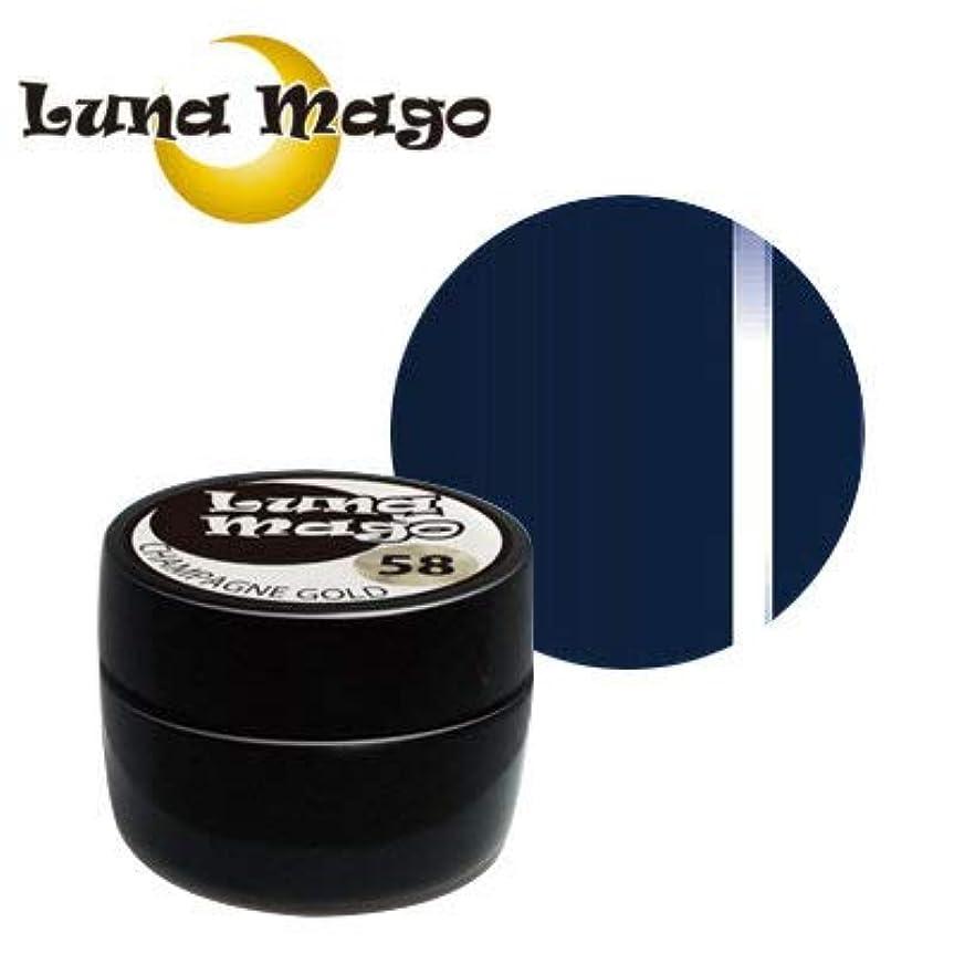 実り多い滑りやすい宙返りLuna Mago カラージェル 5g 049 シーグリーン