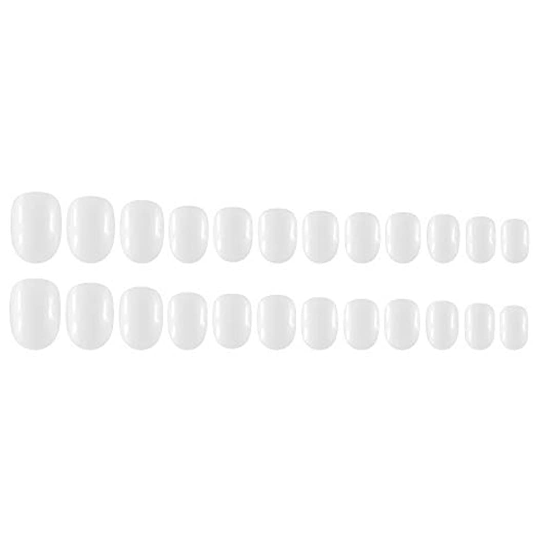 アルカイックローストのスコアDecdeal Decdeal ネイルチップ 24ピース 12異なるサイズ diy サロン ネイルアートツール 偽
