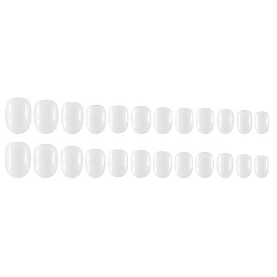 リレーエスカレート抵抗力があるDecdeal Decdeal ネイルチップ 24ピース 12異なるサイズ diy サロン ネイルアートツール 偽