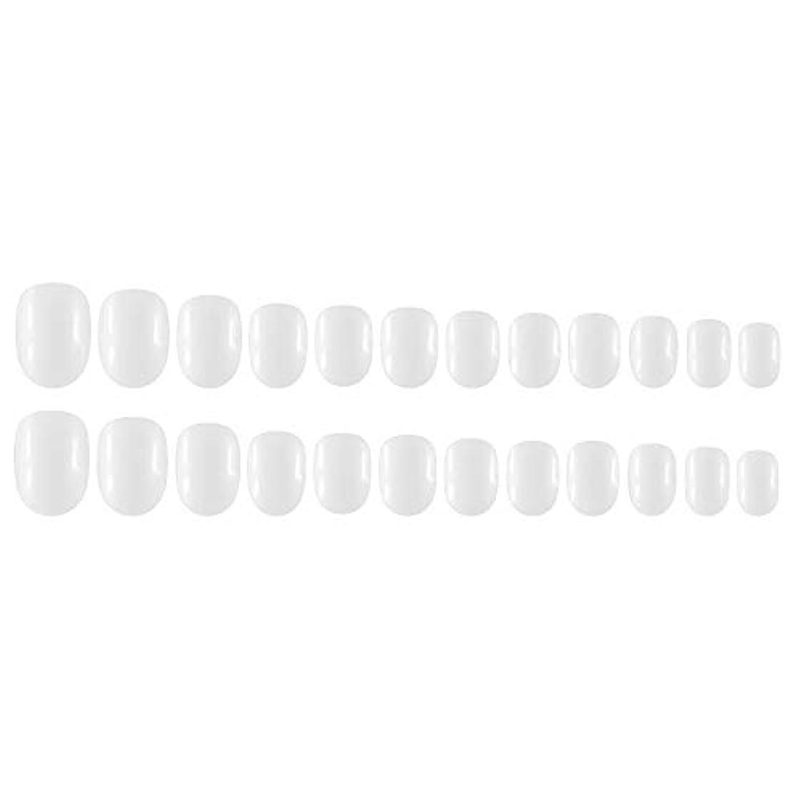 自発的勘違いする包括的Decdeal Decdeal ネイルチップ 24ピース 12異なるサイズ diy サロン ネイルアートツール 偽
