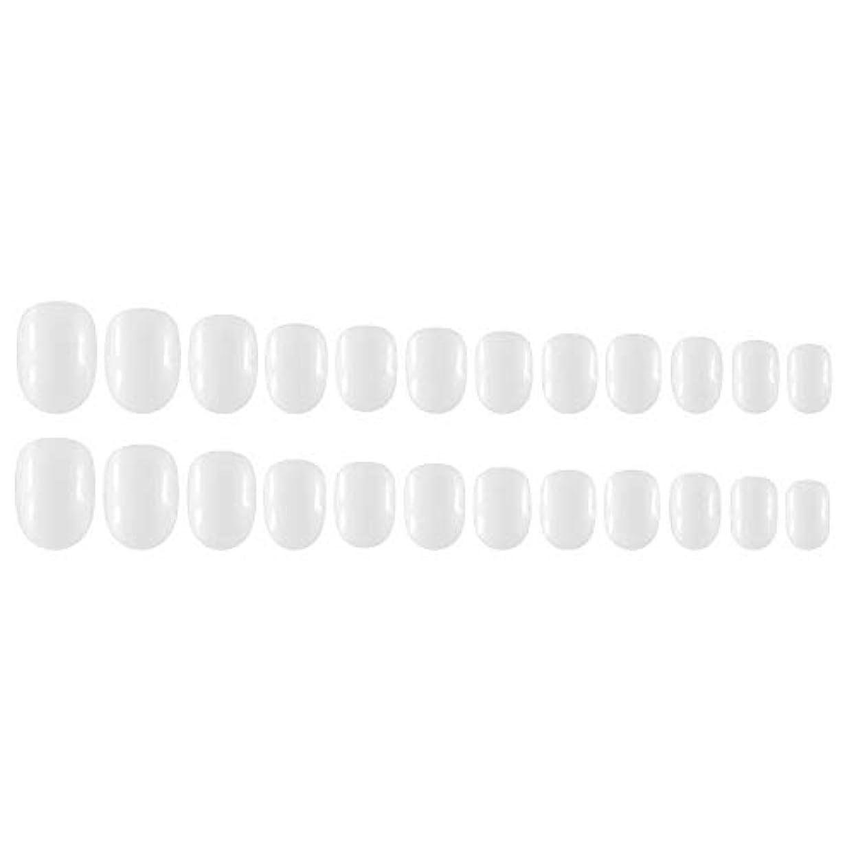 リダクターすべき構造的Decdeal Decdeal ネイルチップ 24ピース 12異なるサイズ diy サロン ネイルアートツール 偽