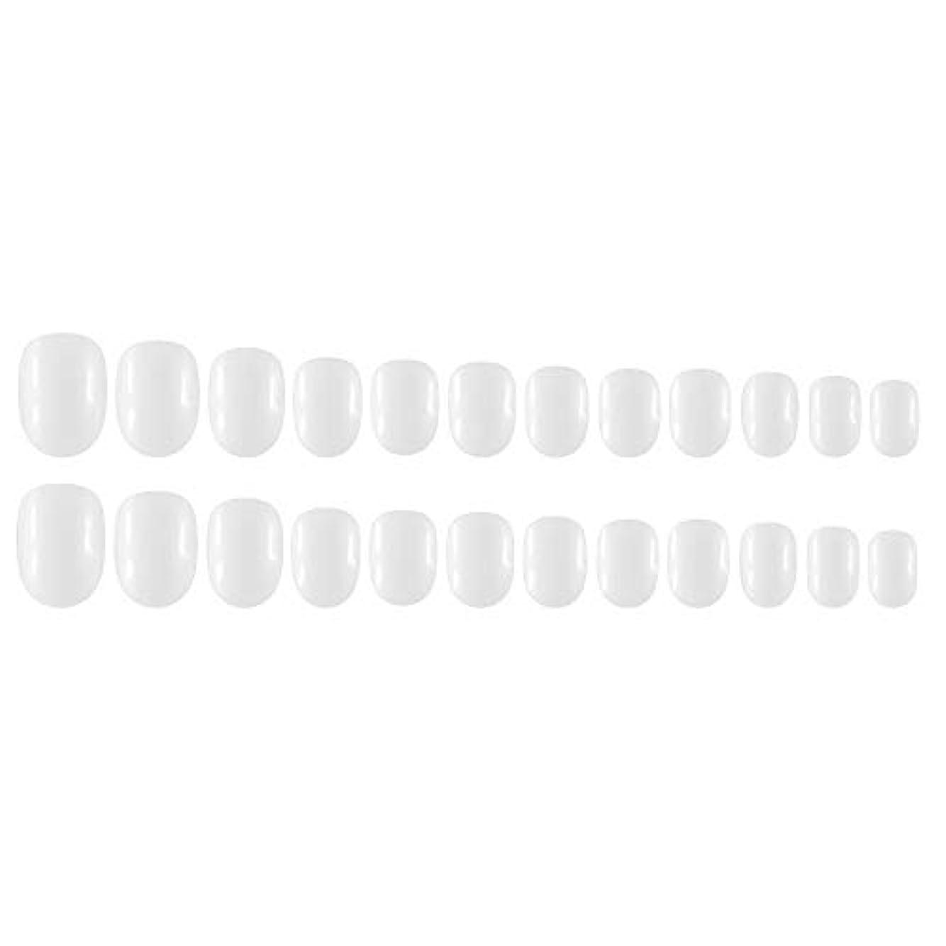 仕える覗くオーラルDecdeal Decdeal ネイルチップ 24ピース 12異なるサイズ diy サロン ネイルアートツール 偽
