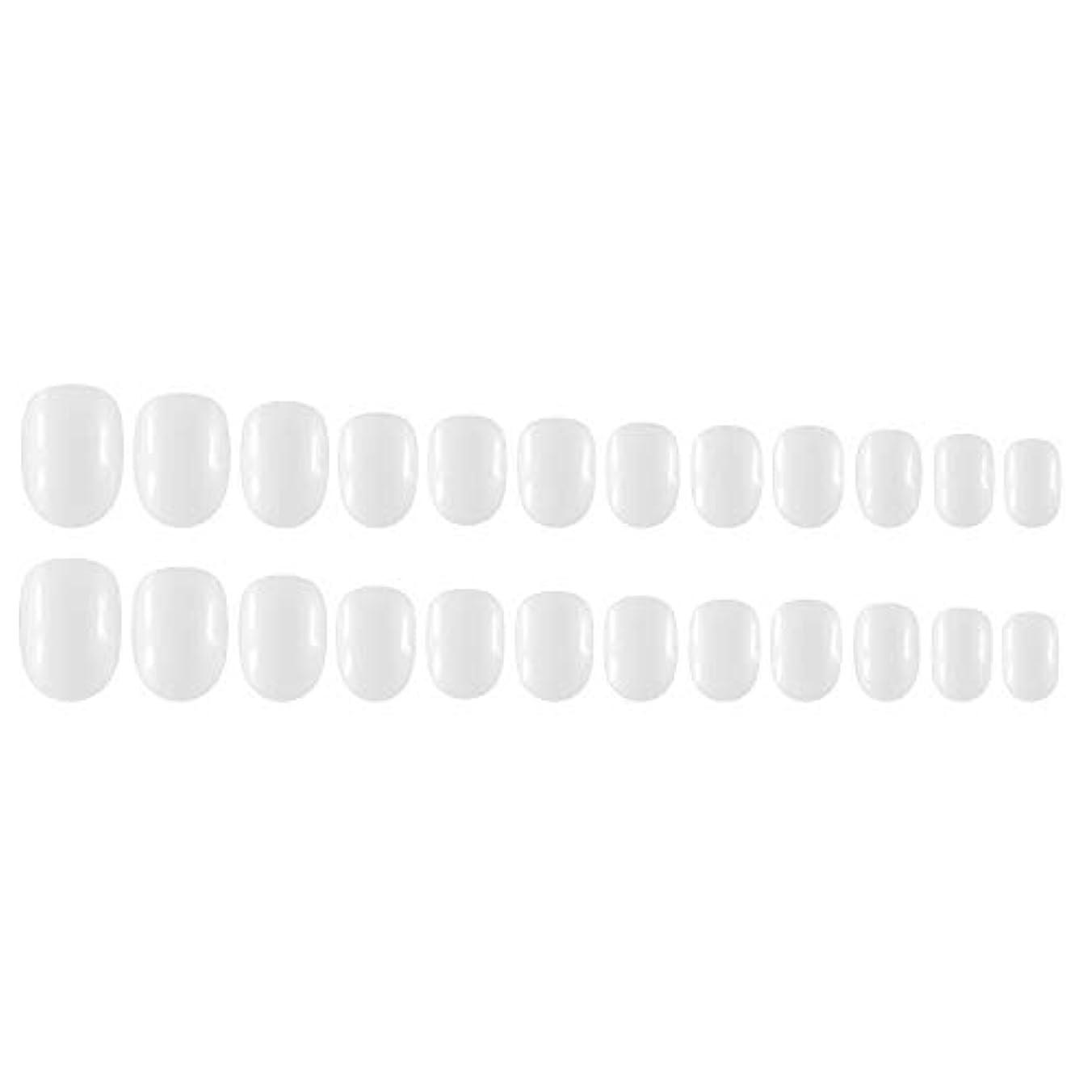 代数ポインタ快適Decdeal Decdeal ネイルチップ 24ピース 12異なるサイズ diy サロン ネイルアートツール 偽