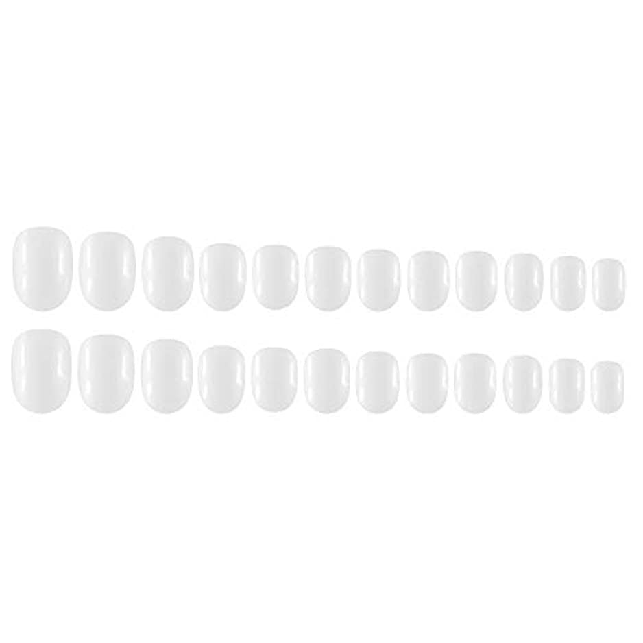シュートヒロイン落ち着いてDecdeal Decdeal ネイルチップ 24ピース 12異なるサイズ diy サロン ネイルアートツール 偽