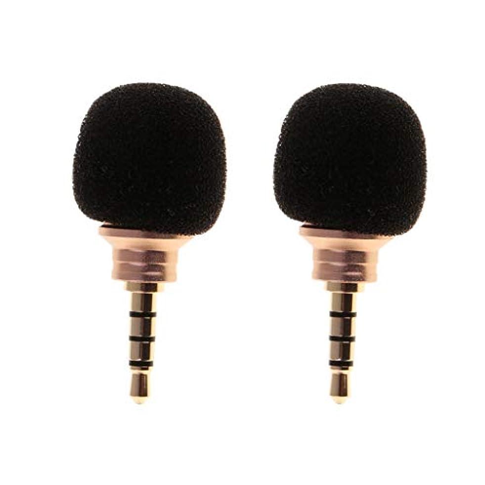 雨のトラフィック修復D DOLITY 2個 ミニ 3.5mmマイク スマートフォン 携帯電話 録音用
