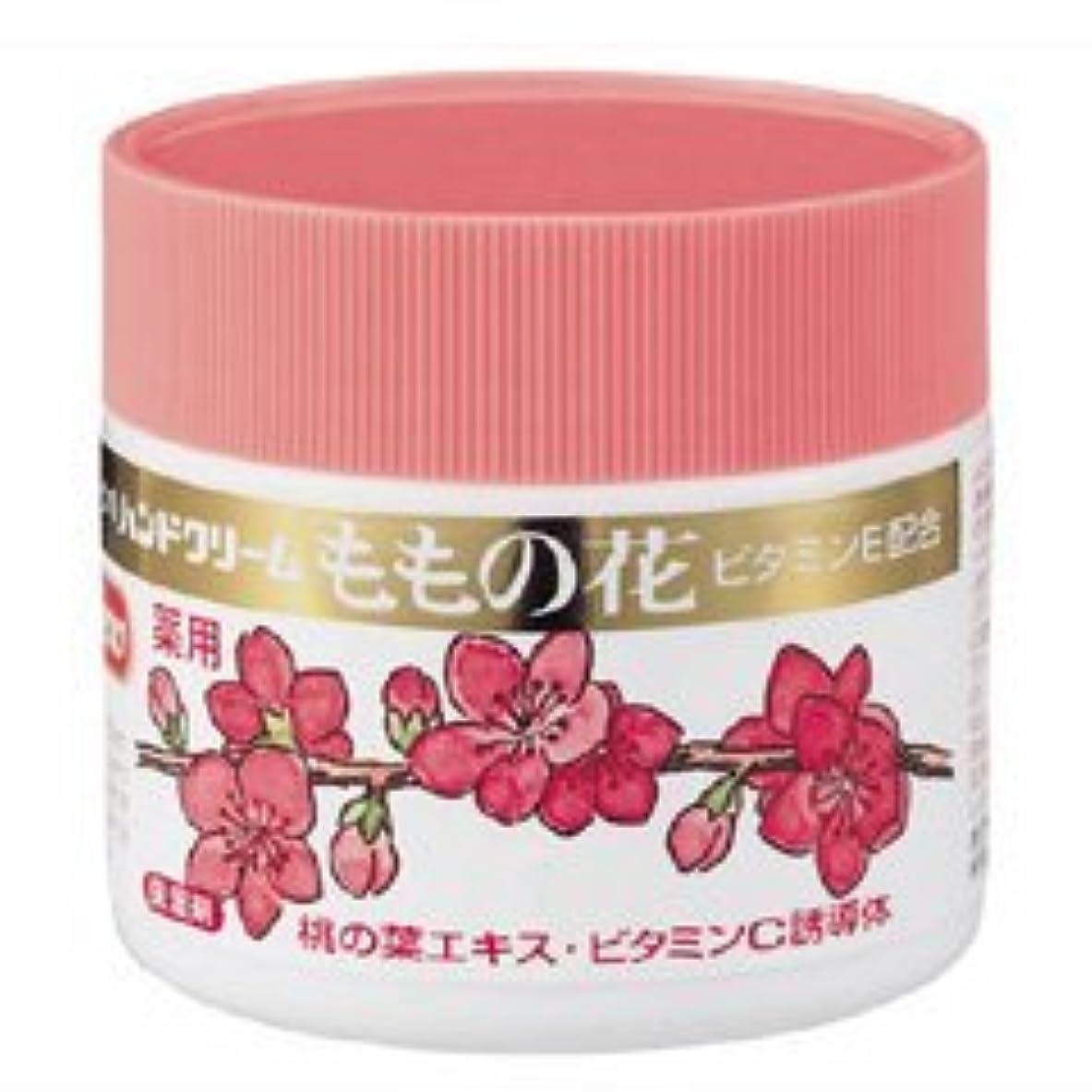 モールアパート食料品店【オリヂナル】ハンドクリーム ももの花 70g