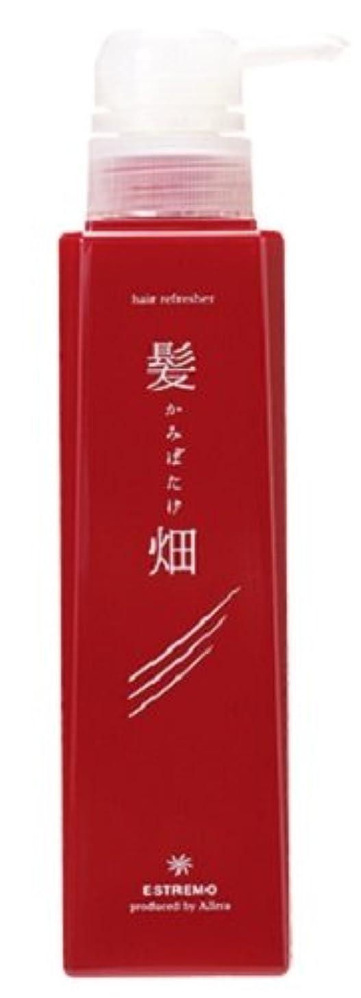メタリック戦闘ギャンブル髪畑 ノンシリコンスキャルプシャンプー 300ml