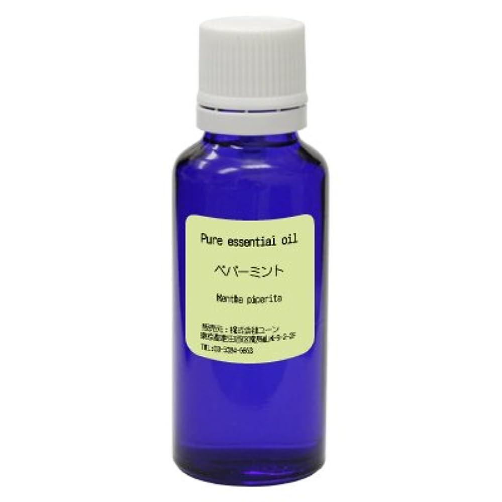 ヒステリックコウモリ用心するペパーミントオイル 30ml ywoil:エッセンシャルオイル(精油)