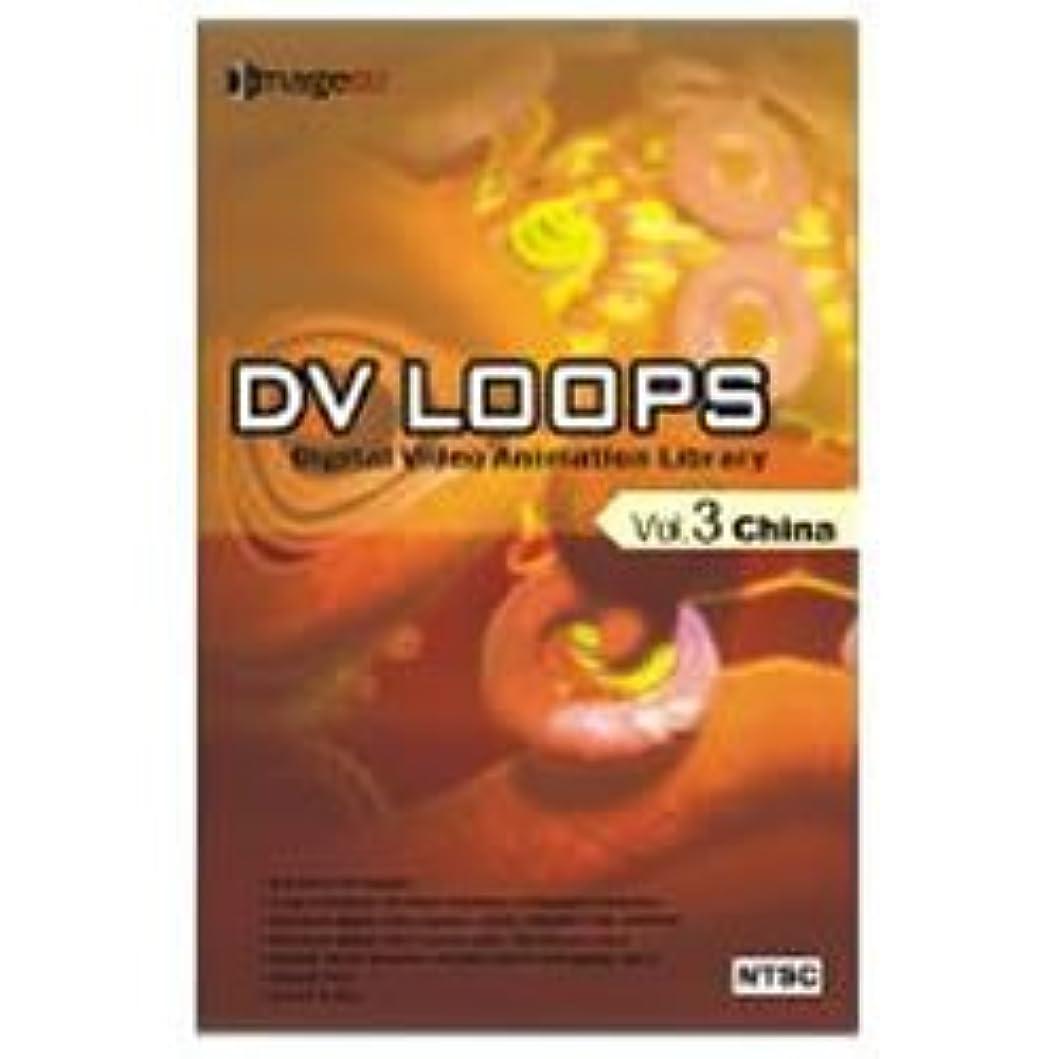 マーティンルーサーキングジュニアずるいロープDV LOOPS Vol.3 チャイナ