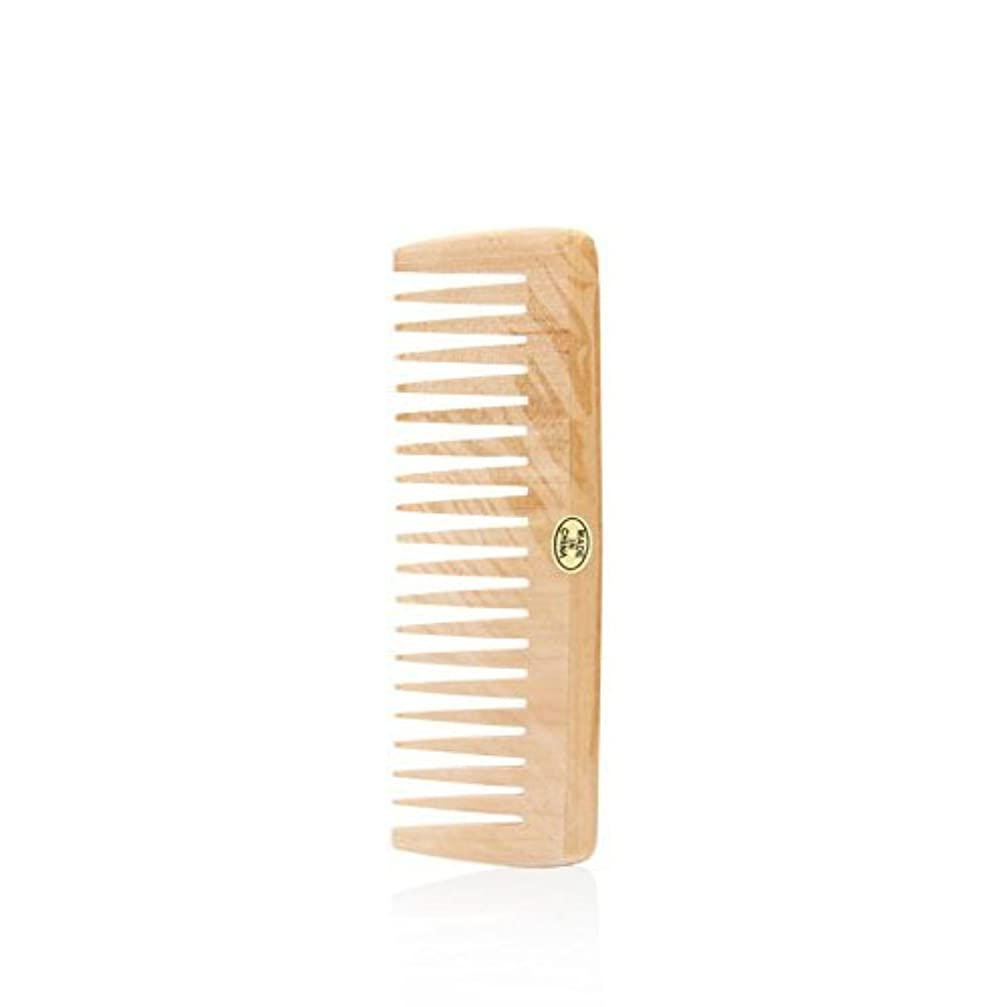 パンフレット有力者ファッションBath Accessories Wood Detangling Comb [並行輸入品]