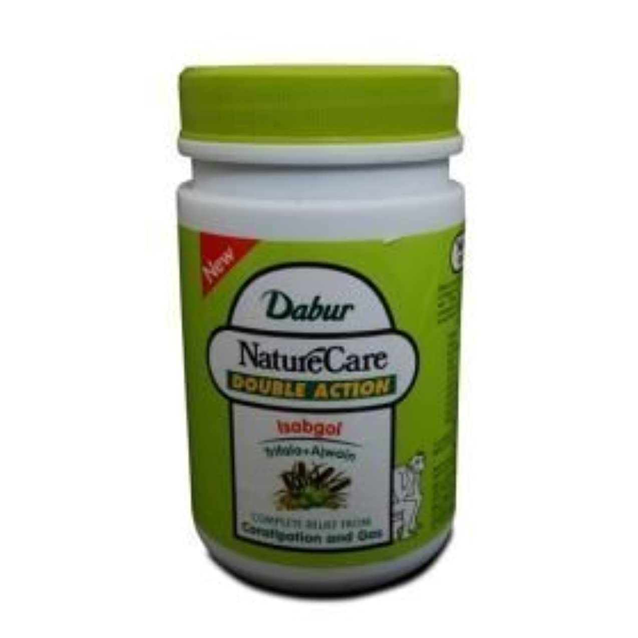 クロール悪名高い創傷Dabur Naturecare Double Action Isabgol Husk Effective Relief From Gas,constipation 100 Grams by Dabur [並行輸入品]