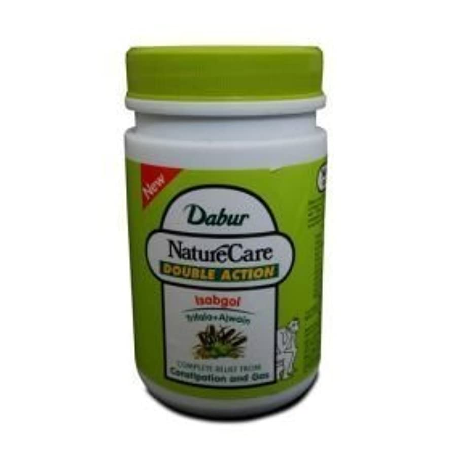 グッゲンハイム美術館類似性ランクDabur Naturecare Double Action Isabgol Husk Effective Relief From Gas,constipation 100 Grams by Dabur [並行輸入品]