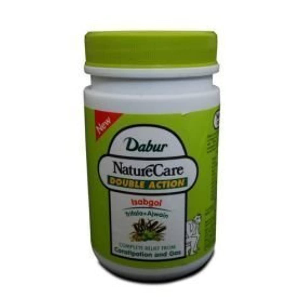 気味の悪い彫刻緊張するDabur Naturecare Double Action Isabgol Husk Effective Relief From Gas,constipation 100 Grams by Dabur [並行輸入品]