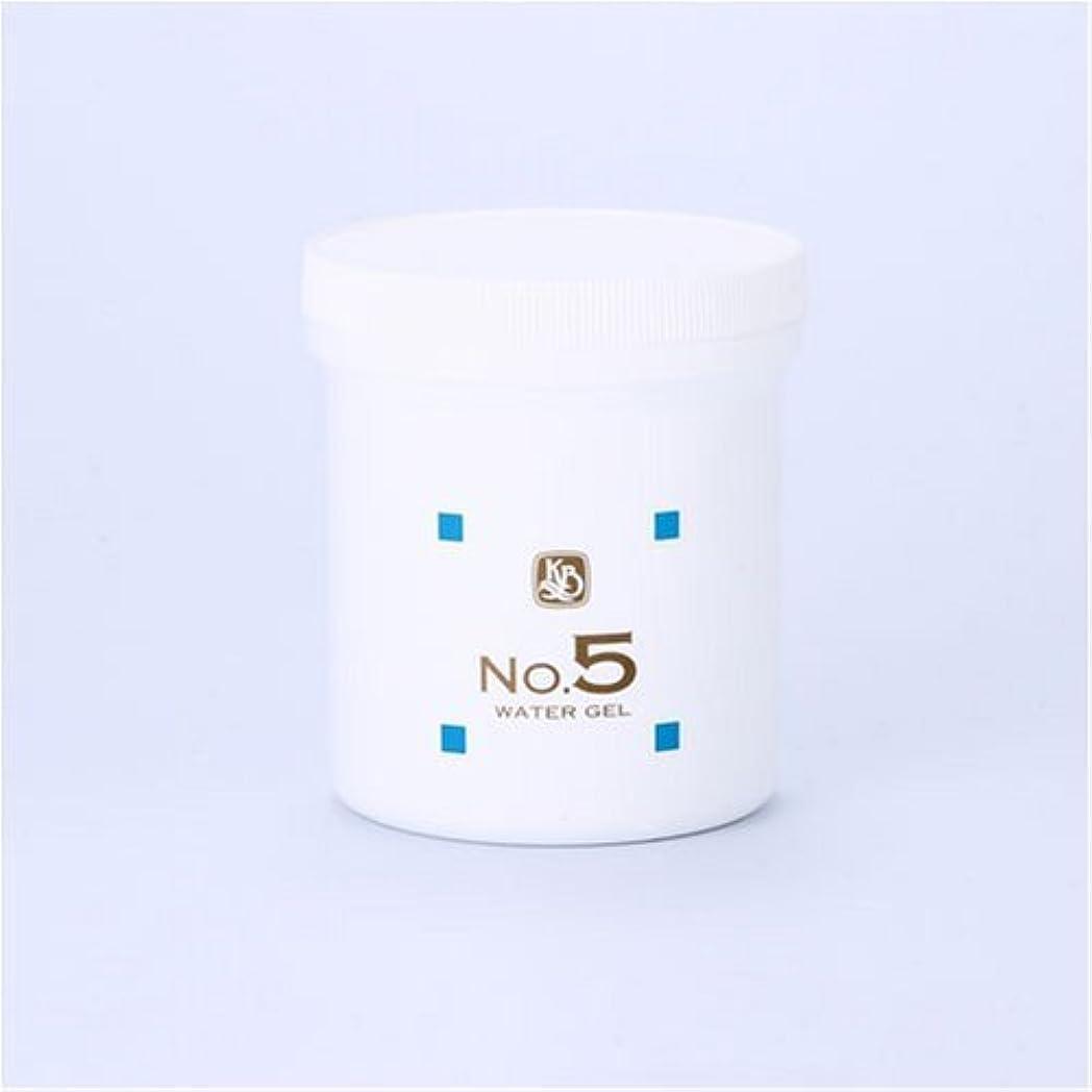 顔を洗う水シリーズ ウォーターゲルNo.5 500g