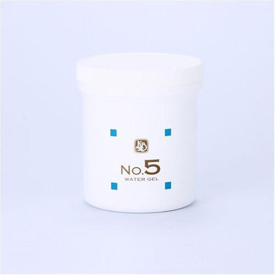 サルベージ利益バズ顔を洗う水シリーズ ウォーターゲルNo.5 500g