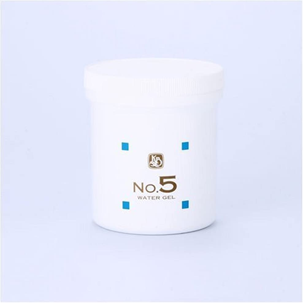 委託ゴミスケルトン顔を洗う水シリーズ ウォーターゲルNo.5 500g