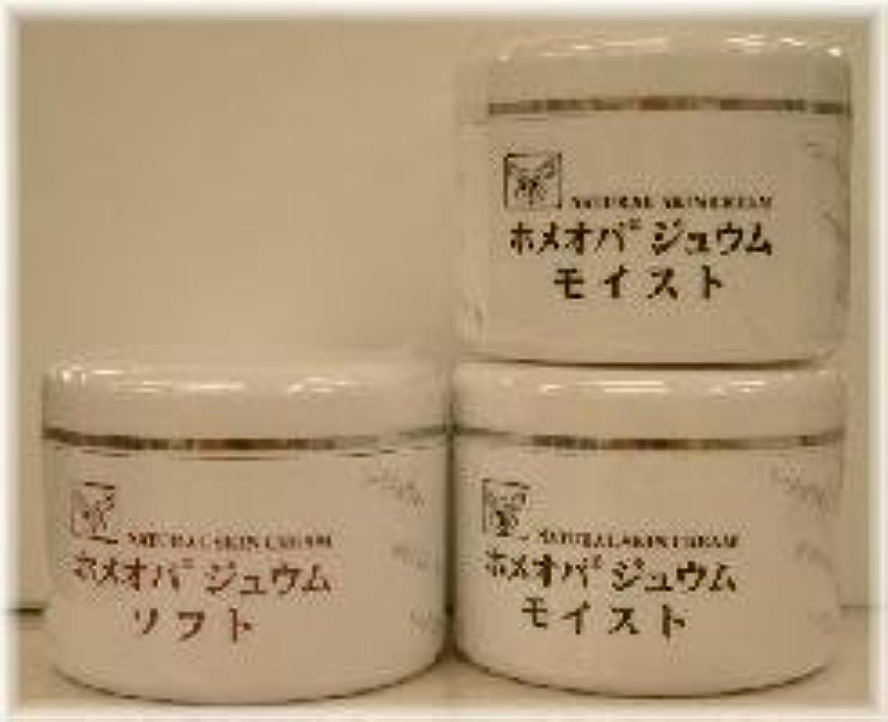 製作パットエンティティホメオパジュウム スキンケア商品3点 ¥10500クリームモイスト2個+クリームソフト