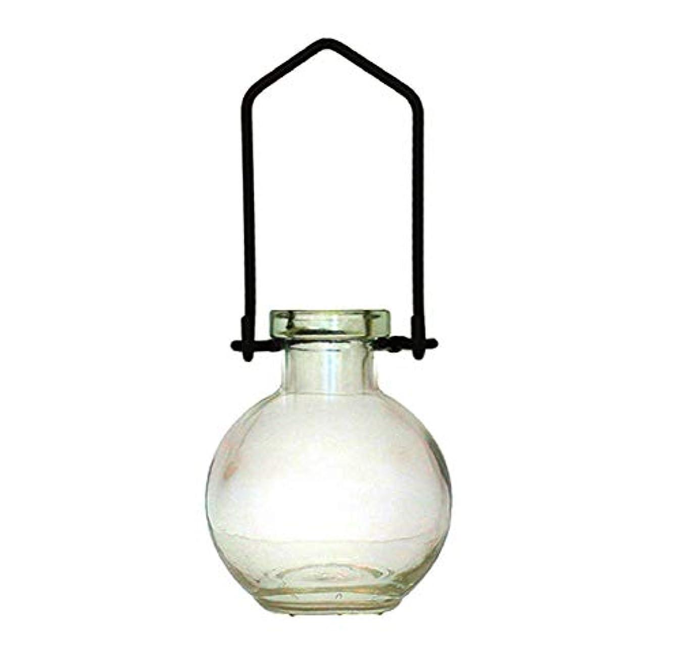 適応的アトミック時代遅れ装飾用吊り下げ花瓶 小型のガラスボトル 寮の飾り カラフルなお香立て 壁掛け装飾 ロマンチックな装飾 クリア G268VF