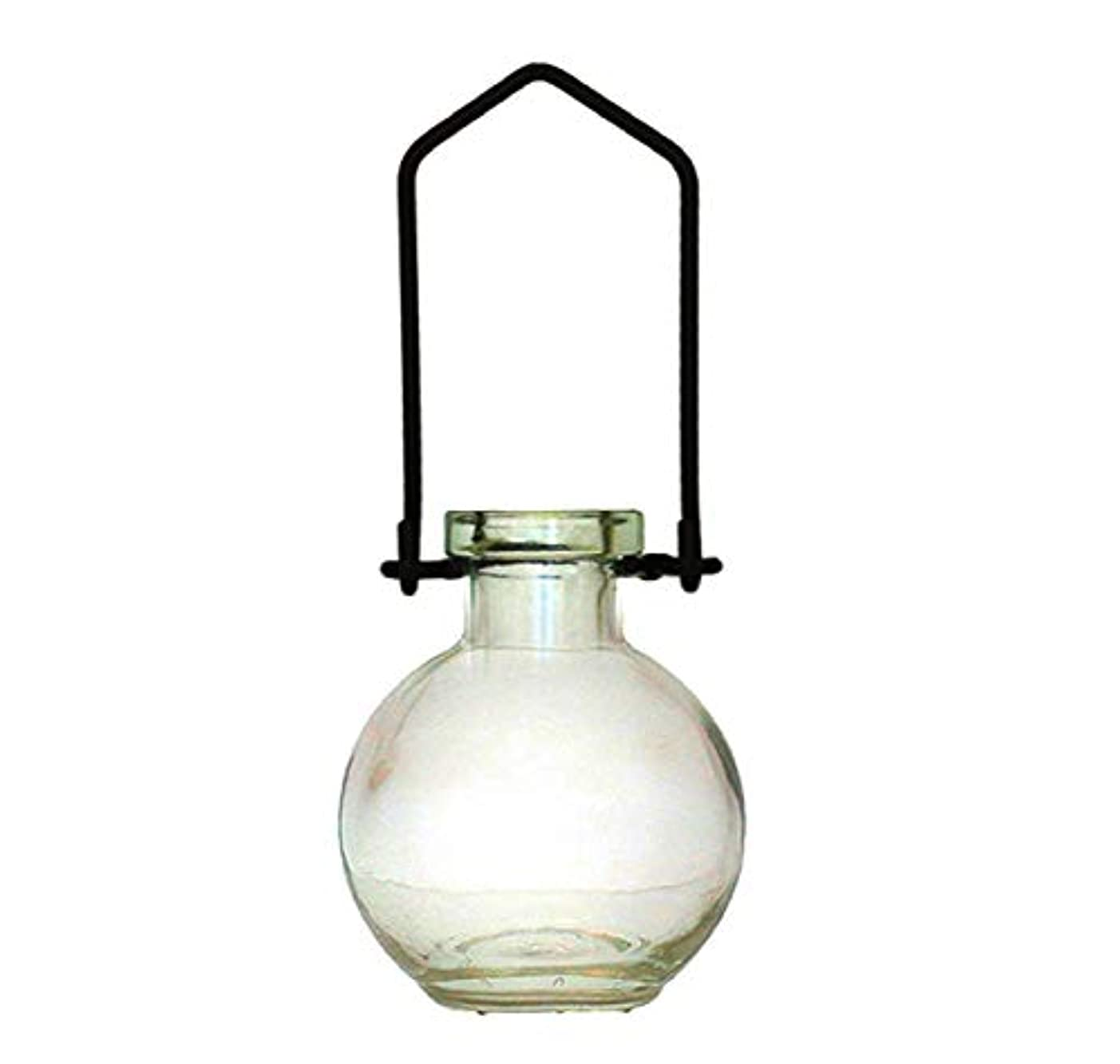 ペンフレンド明るい可聴装飾用吊り下げ花瓶 小型のガラスボトル 寮の飾り カラフルなお香立て 壁掛け装飾 ロマンチックな装飾 クリア G268VF